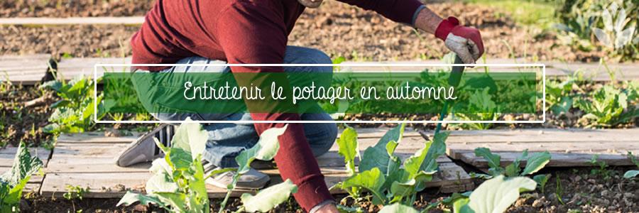 entretenir le potager en automne
