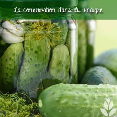 légumes dans du vinaigre