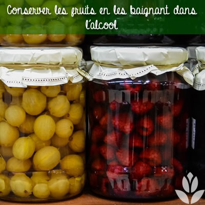 conservation des fruits dans de l'alcool