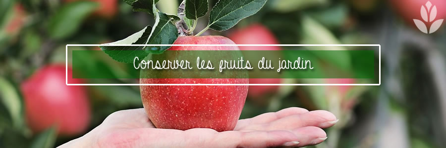 conserver les fruits du jardin