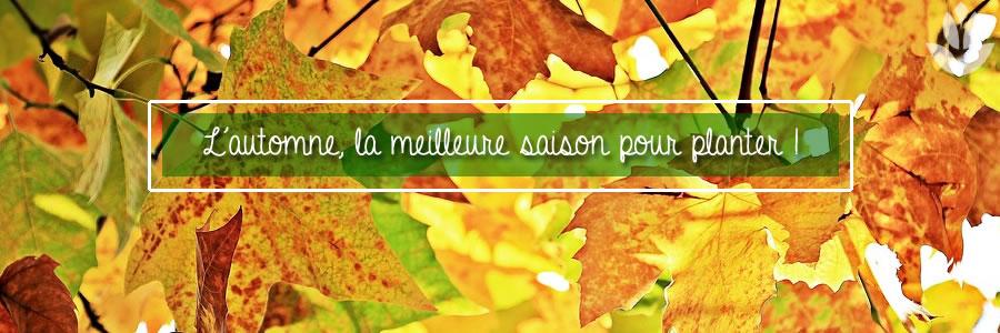 automne la meilleure saison