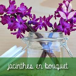 jacinthe en bouquet