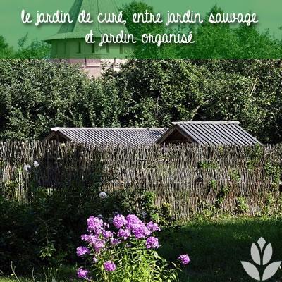 un jardin de curé organisé
