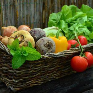 les légumes indispensables du potager