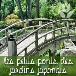 Comment créer un jardin japonais ? - Conseil Jardin Willemse
