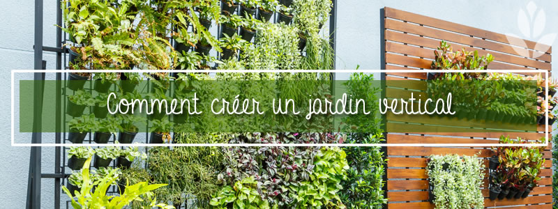 Comment cr er un jardin vertical jardin balcon - Comment faire un jardin vertical ...