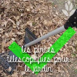 pinces de jardinage