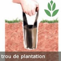 trou de plantation du bulbes