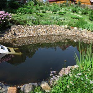 Nettoyer jardin d 39 eau archives les conseils pour votre for Willemse jardin