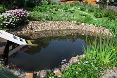 L\'entretien de mon jardin d\'eau - Les conseils pour votre jardin de ...