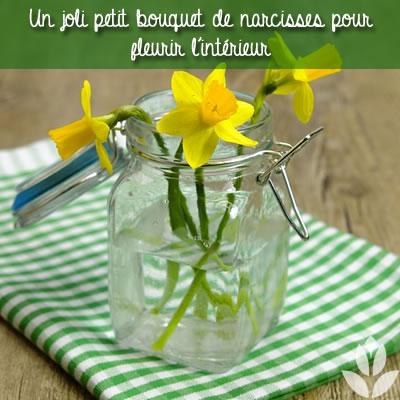bouquet de narcisses