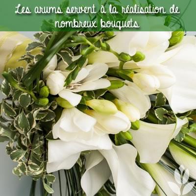 les arums en bouquets