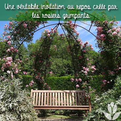 un coin de repos au jardin