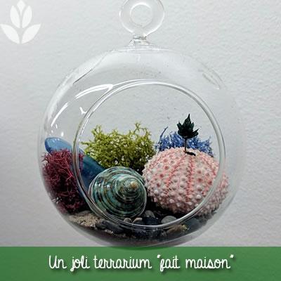 terrarium fait maison