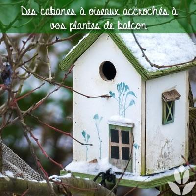 des cabanes à oiseaux pour l'hiver