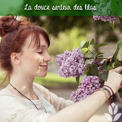 la douce senteur des lilas