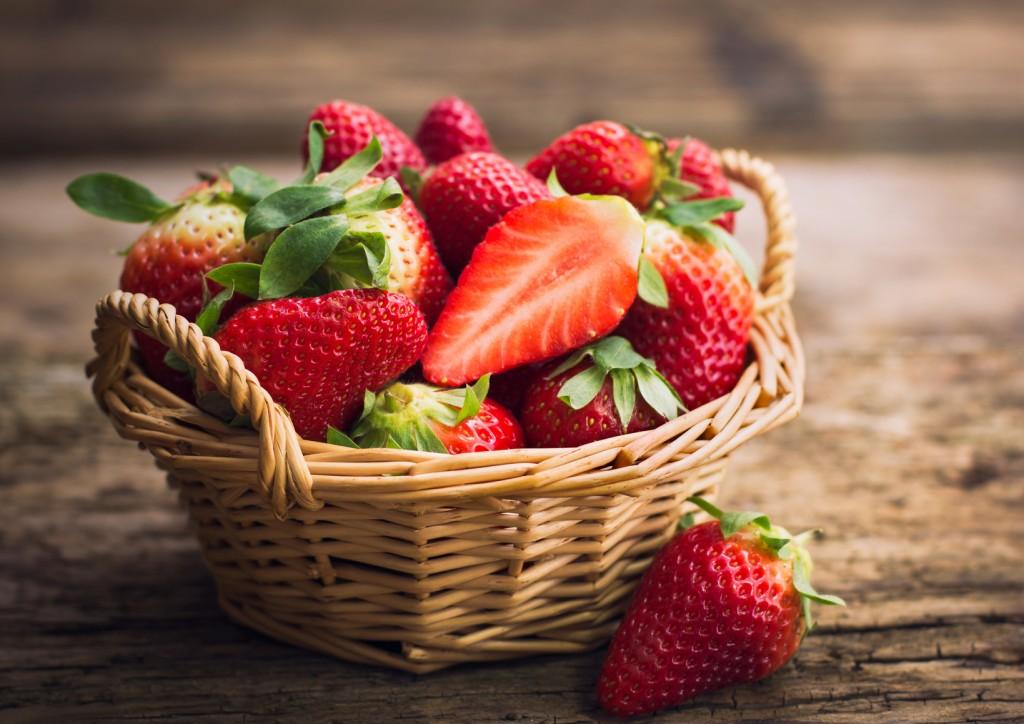 un fraisier bien plant des fraises manger toute l ann e les conseils pour votre jardin. Black Bedroom Furniture Sets. Home Design Ideas