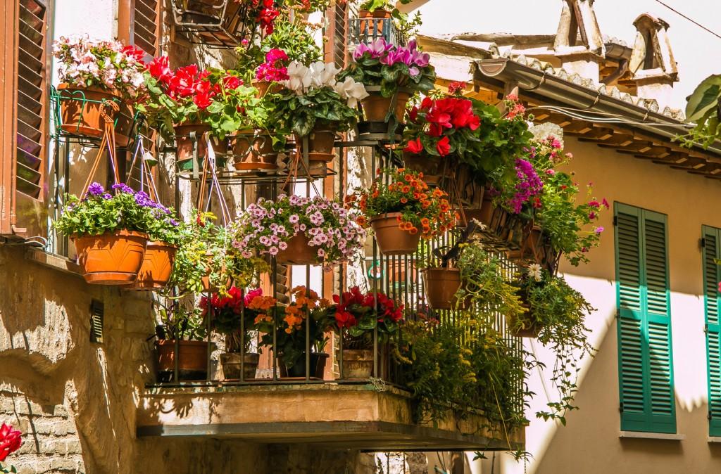 4 bonnes id es de plantes pour fleurir son balcon en septembre les conseils pour votre jardin. Black Bedroom Furniture Sets. Home Design Ideas