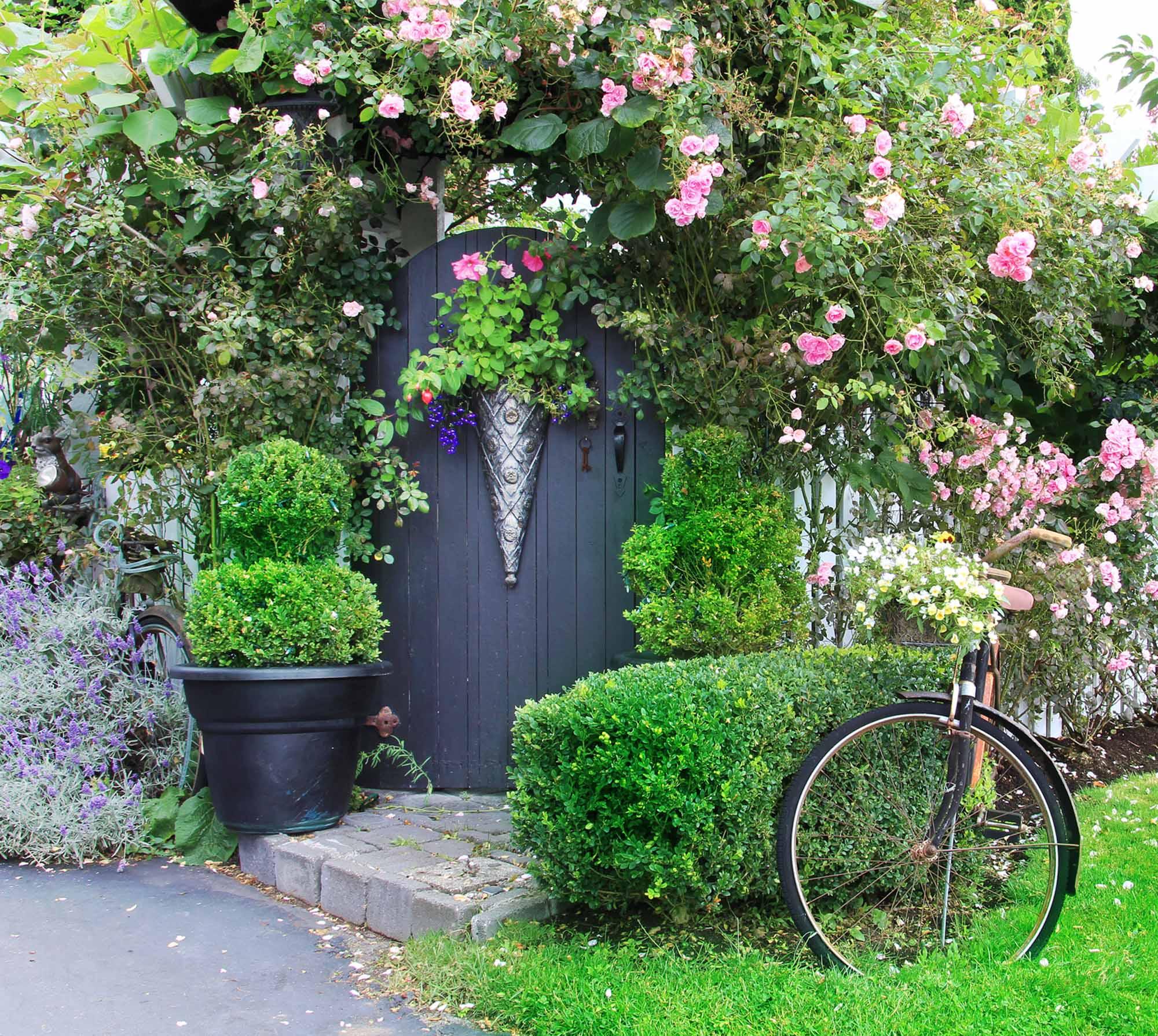 Quelle haie pour mon jardin ? - Les conseils pour votre jardin de ...