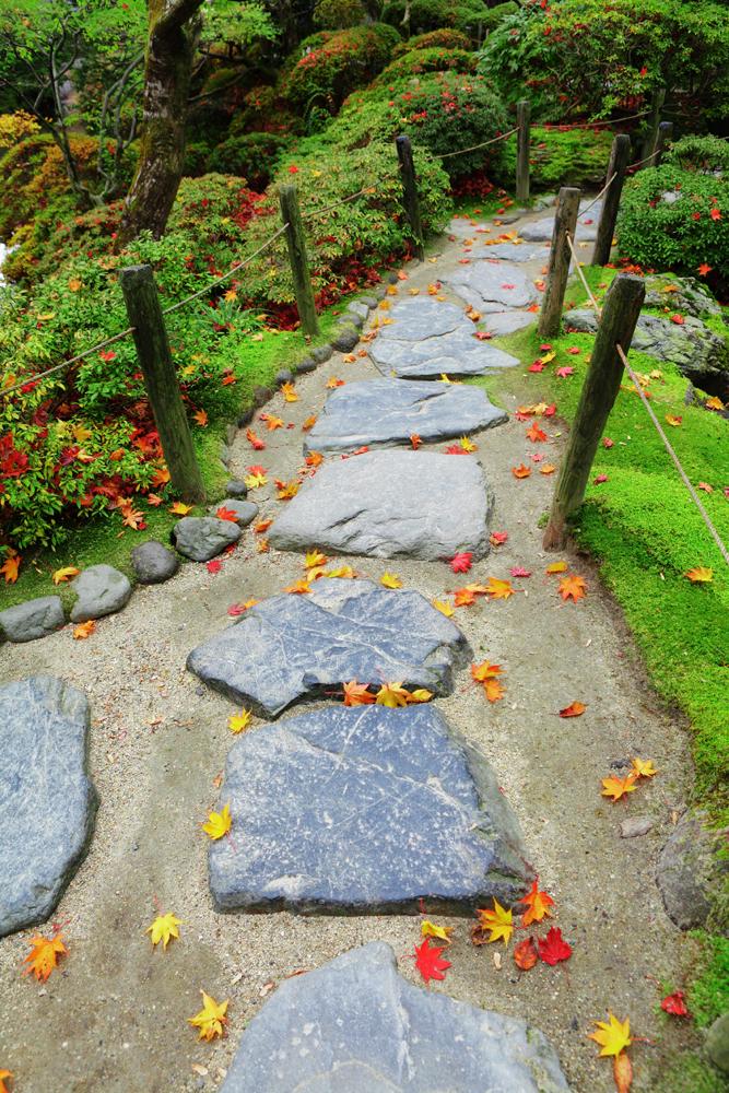 comment cr er un jardin japonais les conseils pour votre jardin de willemse france. Black Bedroom Furniture Sets. Home Design Ideas