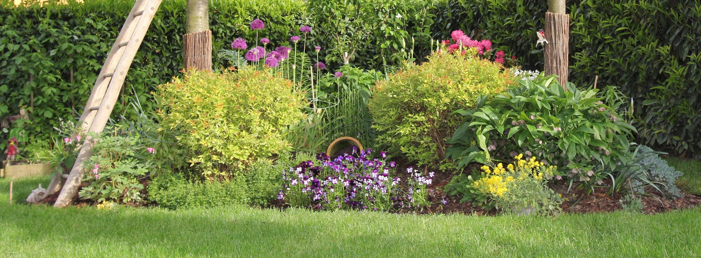 J utilise un carnet de jardin les conseils pour votre for Willemse jardin