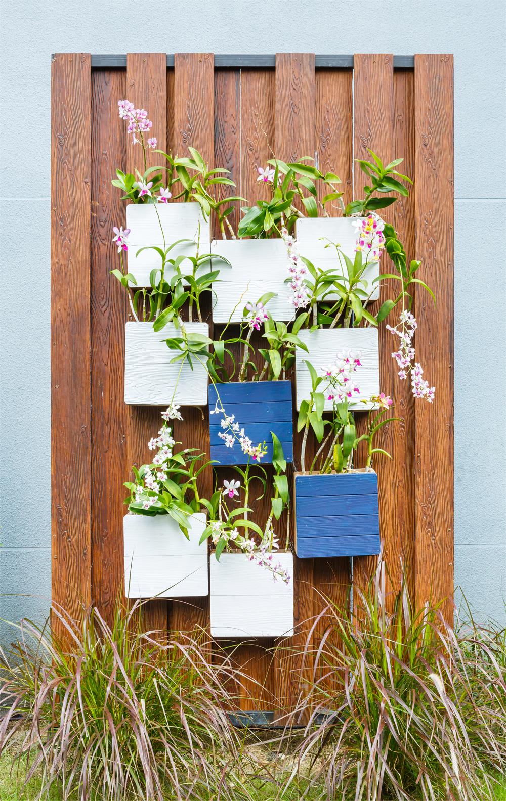 fotolia_66017101_subscription_monthly_xxl - Comment Faire Un Jardin Vertical