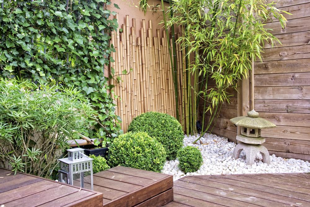 mini jardin zen. jardin zen miniature avec une statue de buddha. le ...