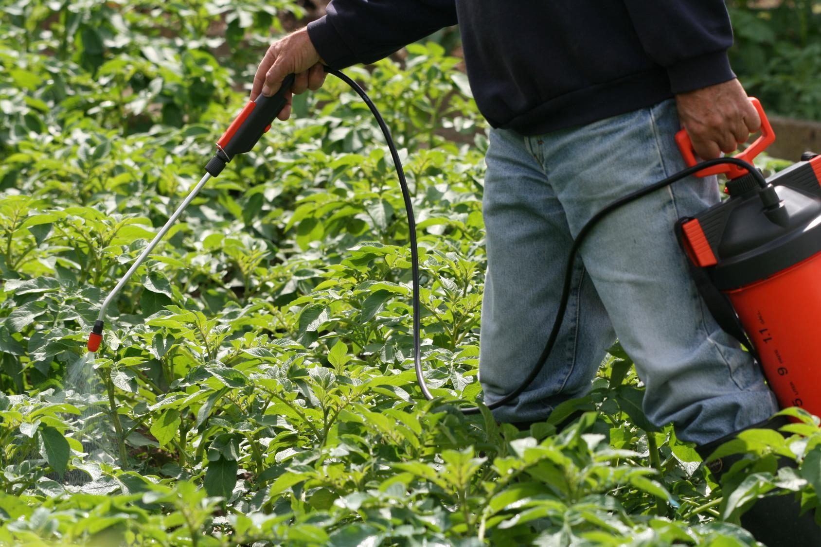 Le d sherbage colo les conseils pour votre jardin de for Aide jardin conseil