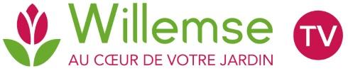 Willemse TV