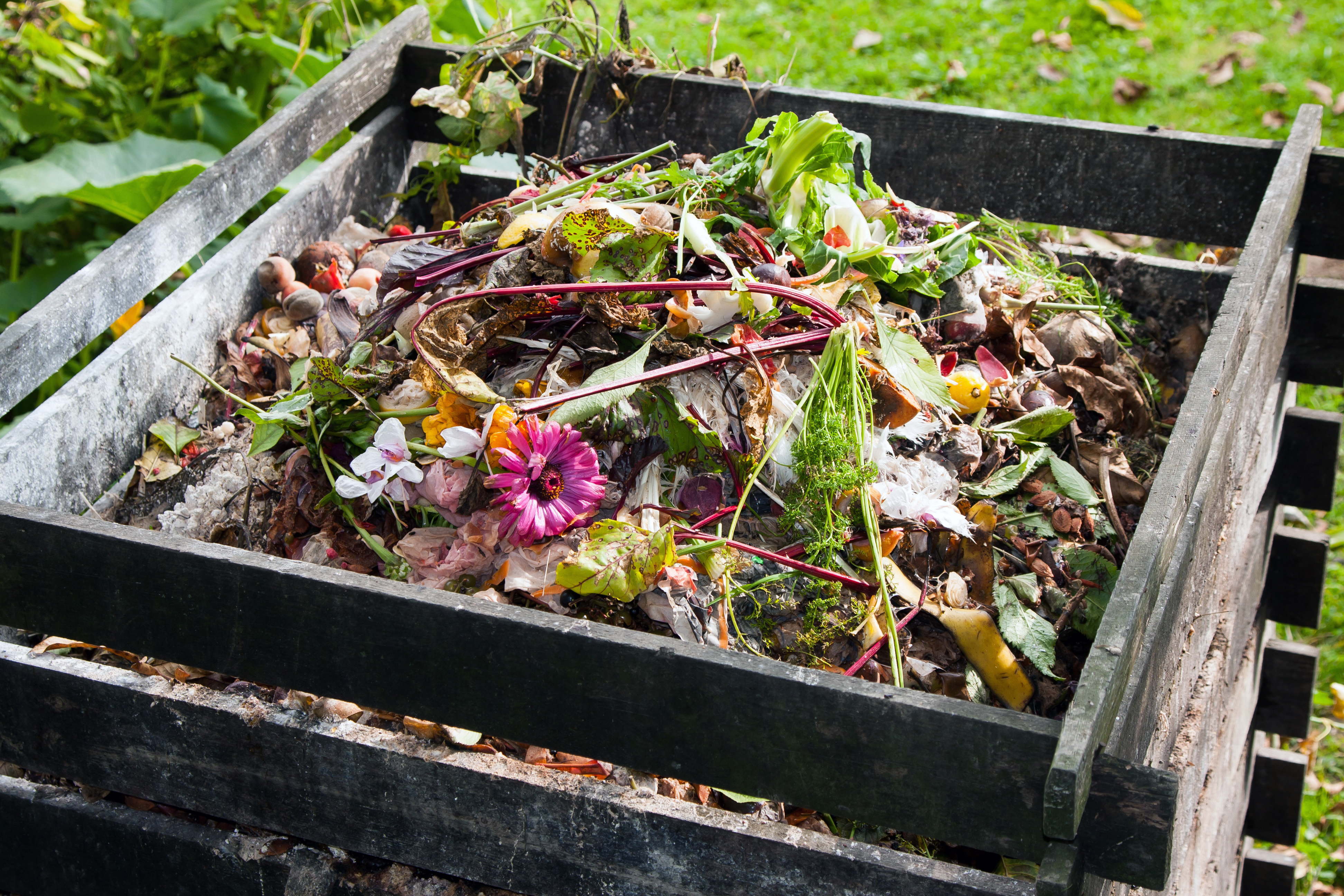 Compost potager bio