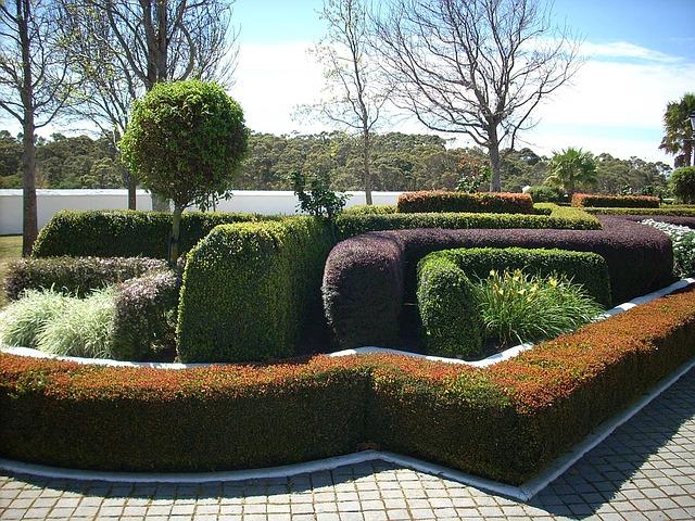 garden-1474947_640