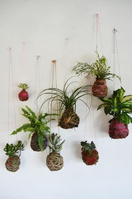 le kokedama l art de cultiver ses plantes autrement les conseils pour votre jardin de. Black Bedroom Furniture Sets. Home Design Ideas