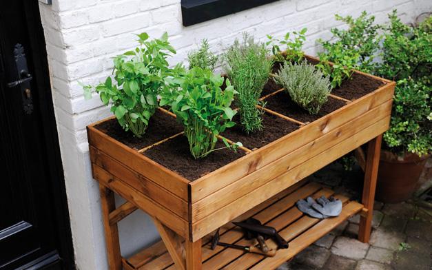 Des Solutions Pour Jardiner Sans Avoir Mal Au Dos  Les Conseils