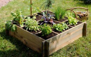 Comment cr er un potager de poche les conseils pour votre jardin de willemse france - Potager hors sol ...