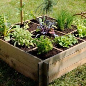 Cr Er Un Jardin Vertical Les Conseils Pour Votre Jardin De Willemse France