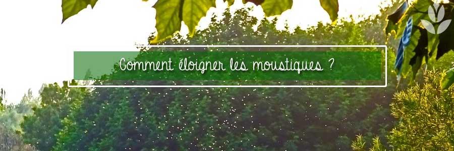 éloigner les moustiques du jardin