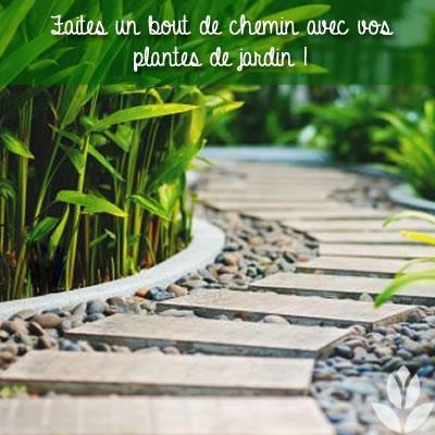 un bout de chemin avec vos plantes de jardin