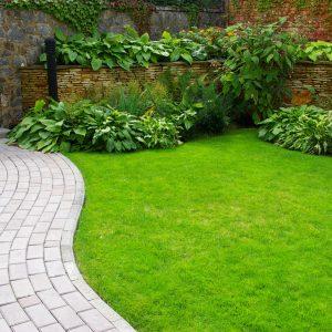 Un jardin pour se cacher des voisins les conseils de for Willemse jardin
