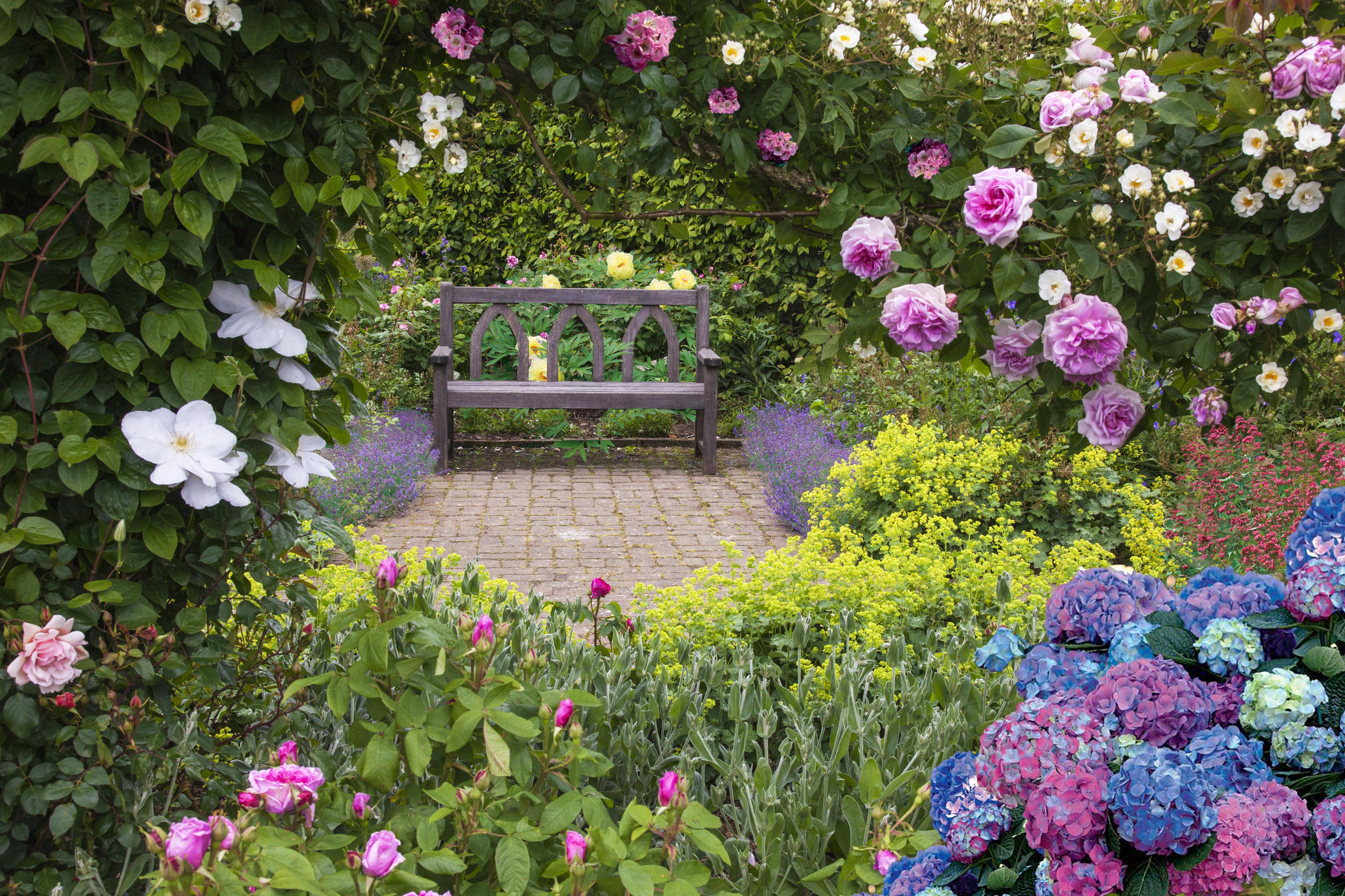 Jardin romantique (bleu, mauve...) - Les conseils de Willemse