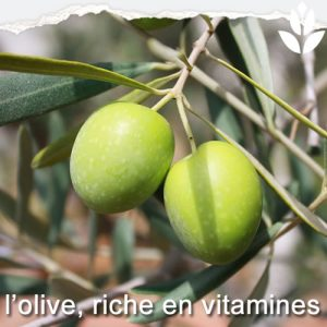 olives riches en vitamines