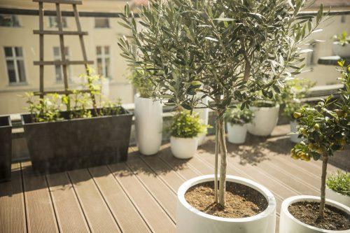Comment Creer Et Embellir Une Belle Terrasse Ensoleillee