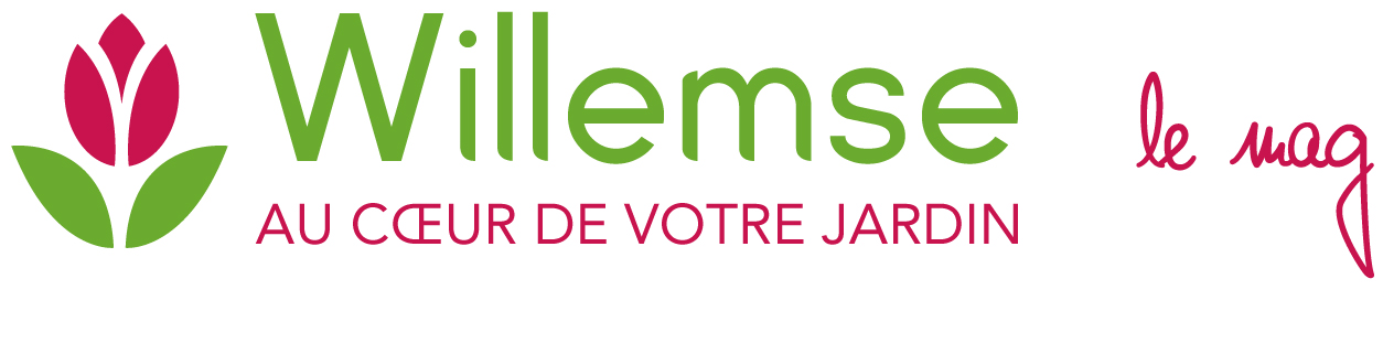 Willemse blog