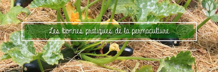 Les bonnes pratiques de la permaculture