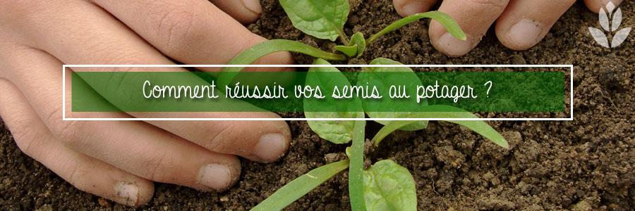 Coment réussir vos semis au potager ?