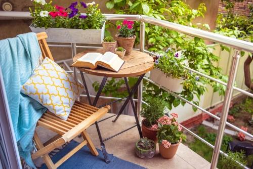 choix de plantes pour terrasse