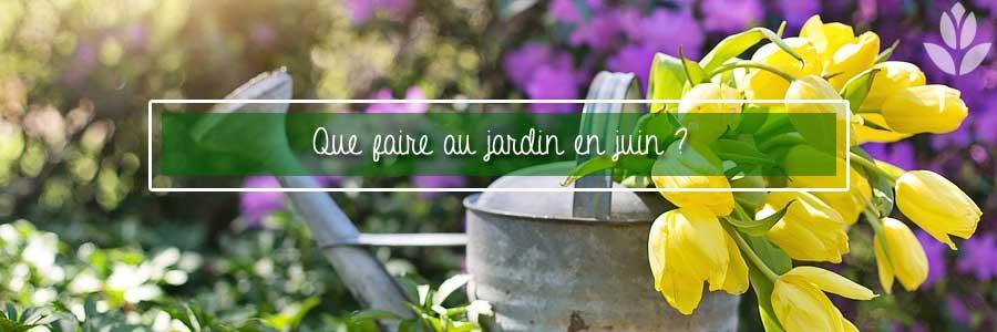 que faire au jardin en juin?