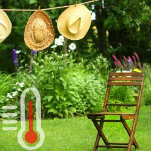 Chaleur au jardin: prendre soin de ses massifs de plantes