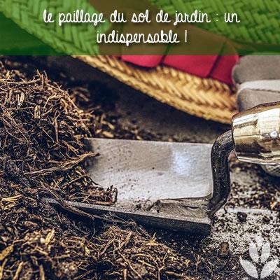le paillage indispensable du sol de jardin