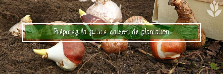 Préparez la future saison de plantation en automne
