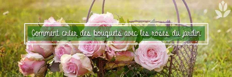 rosiers bouquets